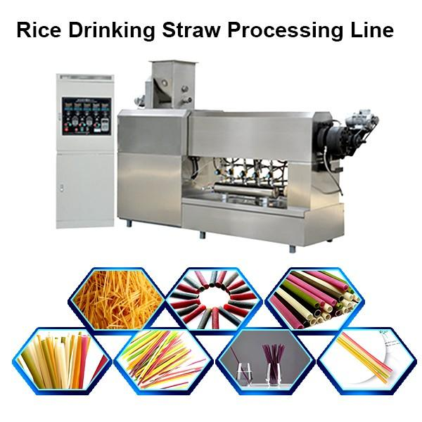 Industry Pasta Instant Noodle Making Machinery / Instant Noodle Processing Machine Fried Instant Noodle Making Equipment #1 image