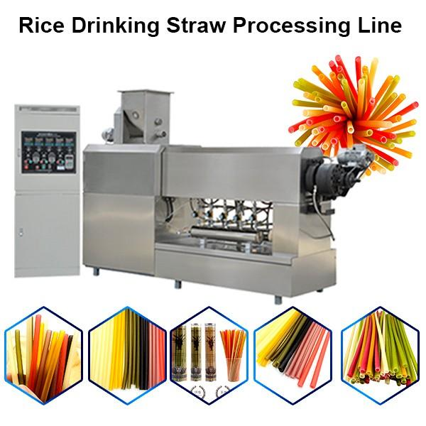 Food Grade Rice Straw Machine Pasta Straw for Drink Water or Juice with Best Quality #1 image