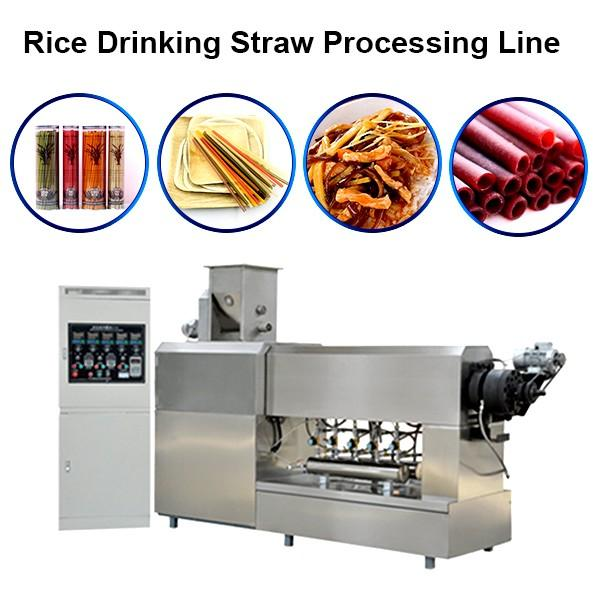 High Capacity Italy Pasta Macaroni Food Making Machine Italy Automatic Pasta Macaroni Machine Pasta Straw Machine #1 image