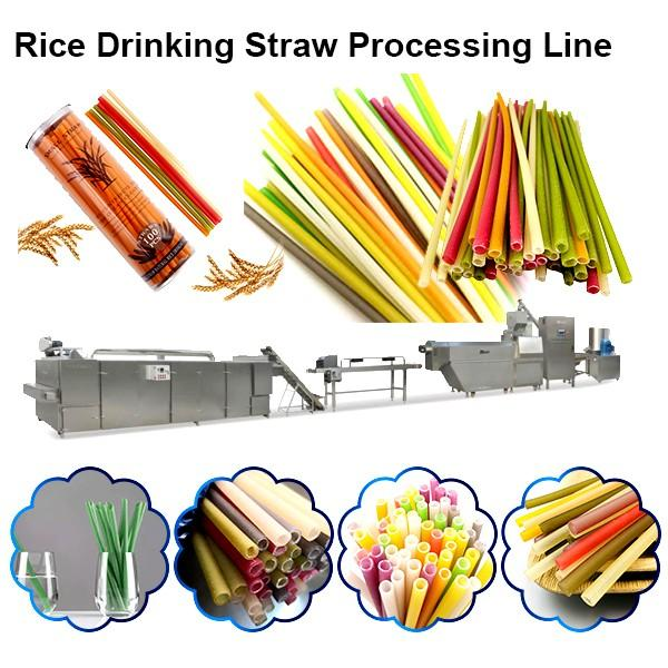 Non Plastic Drinking Straw Extruder Processing Machinery Rice Pasta Straws Manufacturing Line #1 image