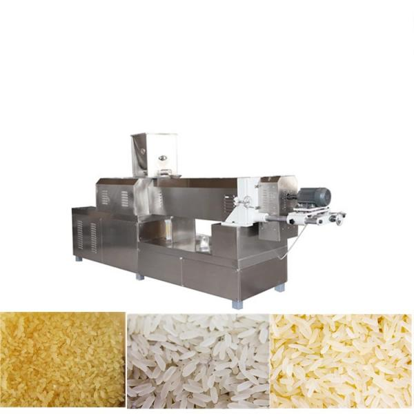 Roasted Cheese Flavor Rice Bites Production Machine #1 image