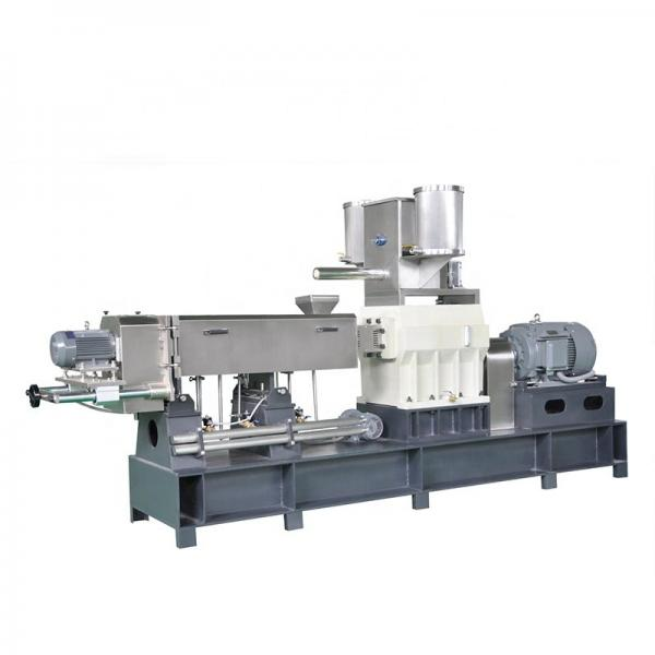 Breakfast Cereals Snacks Food Production Machine/Automatic Breakfast Cereals Manufacturer Line #1 image