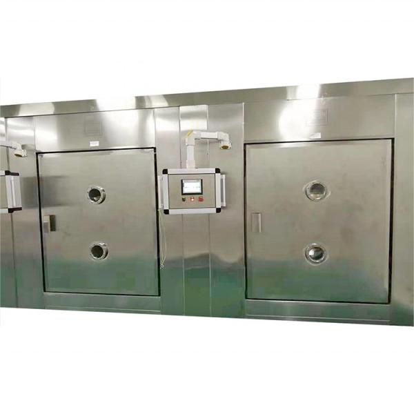 Large Industrial Continuous Tunnel Microwave Dryer #2 image
