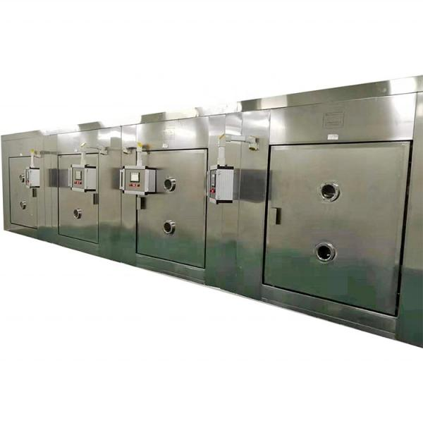 Microwave Continuous Tunnel Type Tray Tunnel Date Peanut Dryer #1 image