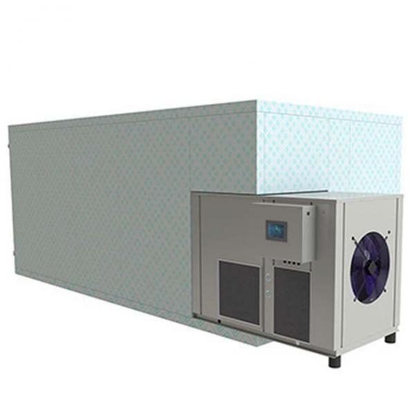 Continuous Conveyor Fruit Vegetable Drying Machine Tunnel Type Belt Dryer #1 image